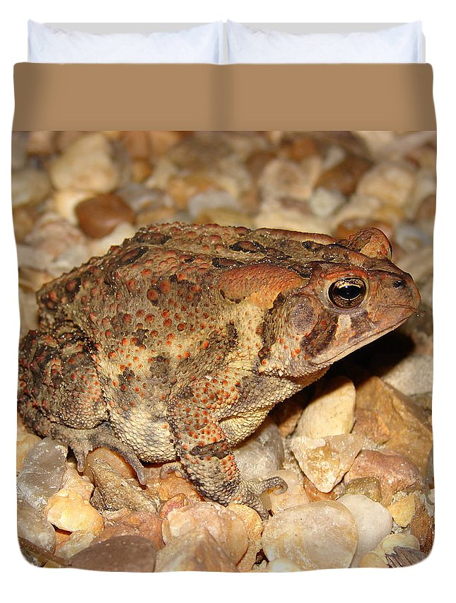Camouflage Duvet Cover featuring the photograph Camouflage Toad by Brett Winn