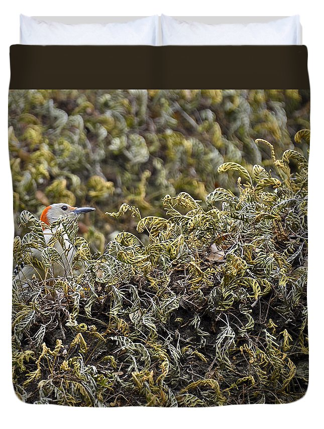 Red-bellied Woodpecker Duvet Cover featuring the photograph Camouflaged Red-bellied Woodpecker by Carolyn Marshall