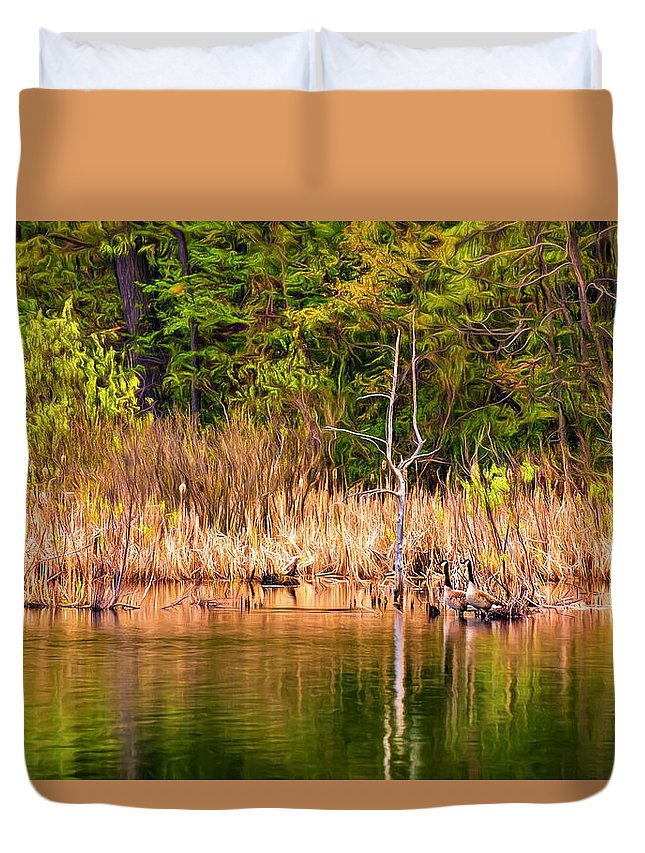 Ontario Duvet Cover featuring the photograph Canada Goose Couple - Paint by Steve Harrington