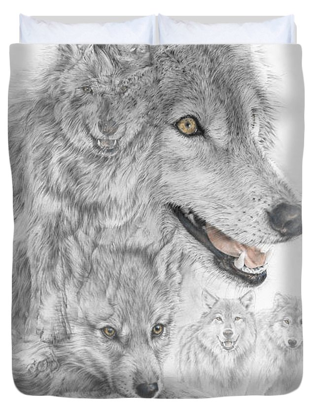 Wolf Duvet Cover featuring the drawing Canis Lupus V The Grey Wolf Of The Americas - The Recovery by Steven Paul Carlson