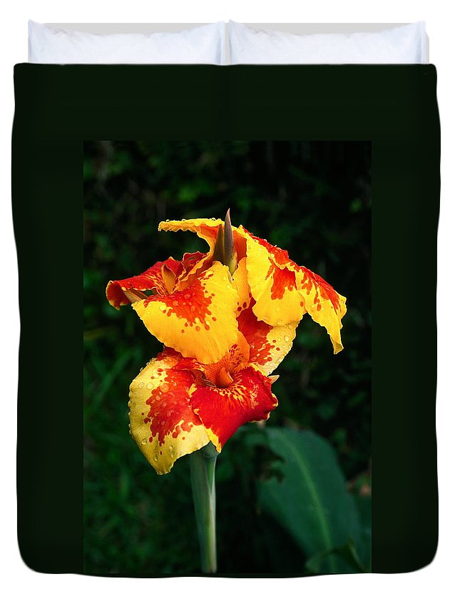 Cannas Duvet Cover featuring the photograph Cannas With Dew by Sally Weigand