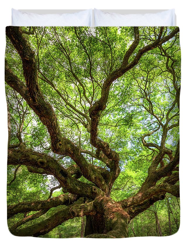 Angel Oak Tree Duvet Cover featuring the photograph Canopy Of Color At Angel Oak Tree by Michael Ver Sprill