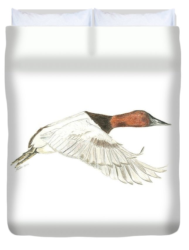 Duck Duvet Cover featuring the drawing Canvasback by Sara Stevenson