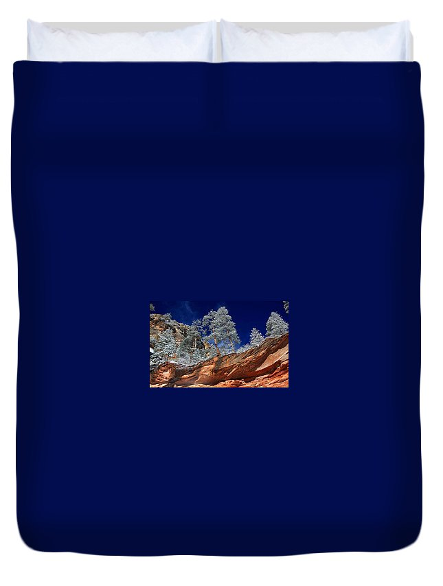 Canyon Duvet Cover featuring the digital art Canyon by Dorothy Binder