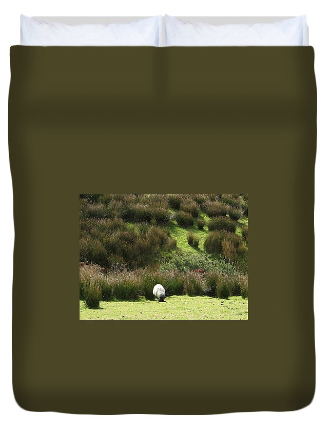 Sheep Duvet Cover featuring the photograph Caora by Kelly Mezzapelle