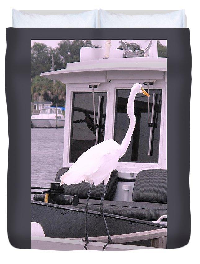 Florida Duvet Cover featuring the photograph Captain Long Legs by Ian MacDonald