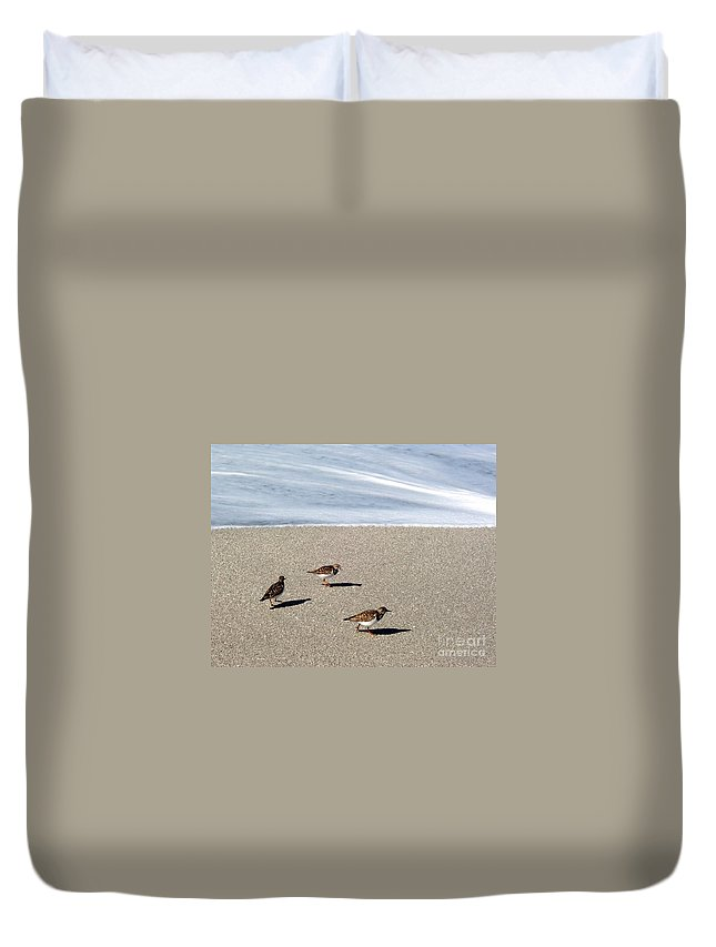 Beach Duvet Cover featuring the photograph Captiva Brids by Elizabeth Klecker