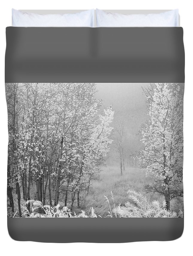Tree Landscape Duvet Cover featuring the photograph Capture Me Misty by Kendra Keir