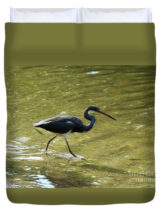 Tricolored Heron Duvet Cover featuring the photograph Career Anlong by Christiane Schulze Art And Photography