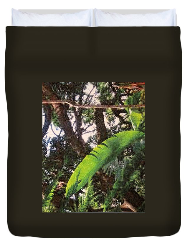 Caribbean Duvet Cover featuring the photograph Caribbean Banana Leaf by Ian MacDonald