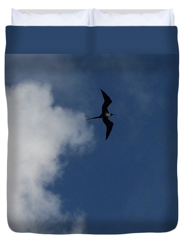 Bird Duvet Cover featuring the photograph Caribbean Sky by Michelle Miron-Rebbe