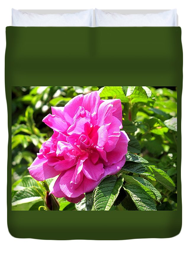 Rose Duvet Cover featuring the photograph Carmen by Ian MacDonald