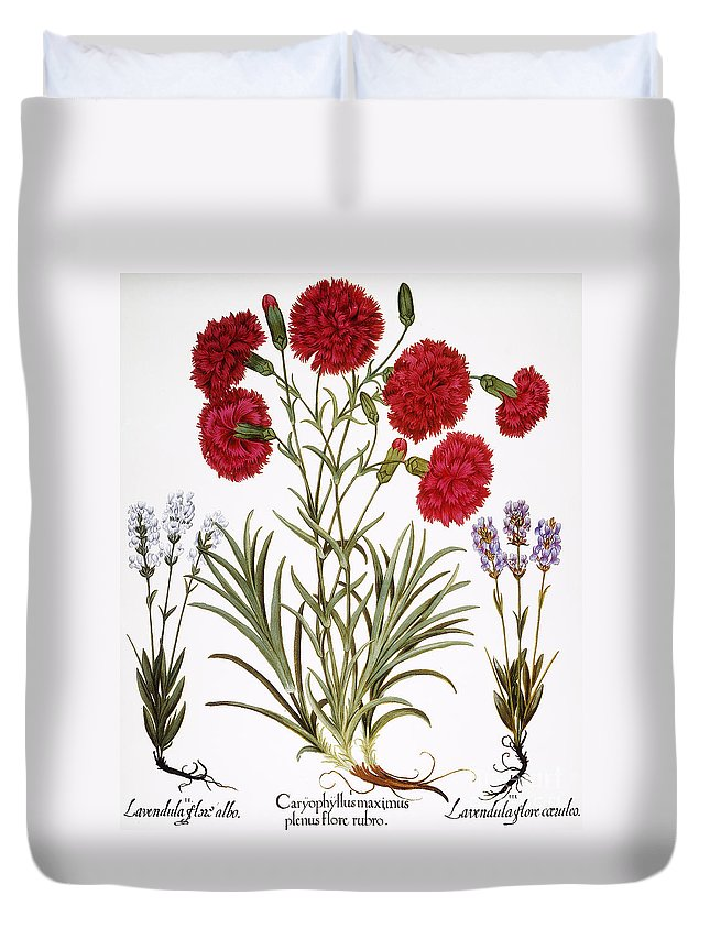 1613 Duvet Cover featuring the photograph Carnation & Lavender, 1613 by Granger