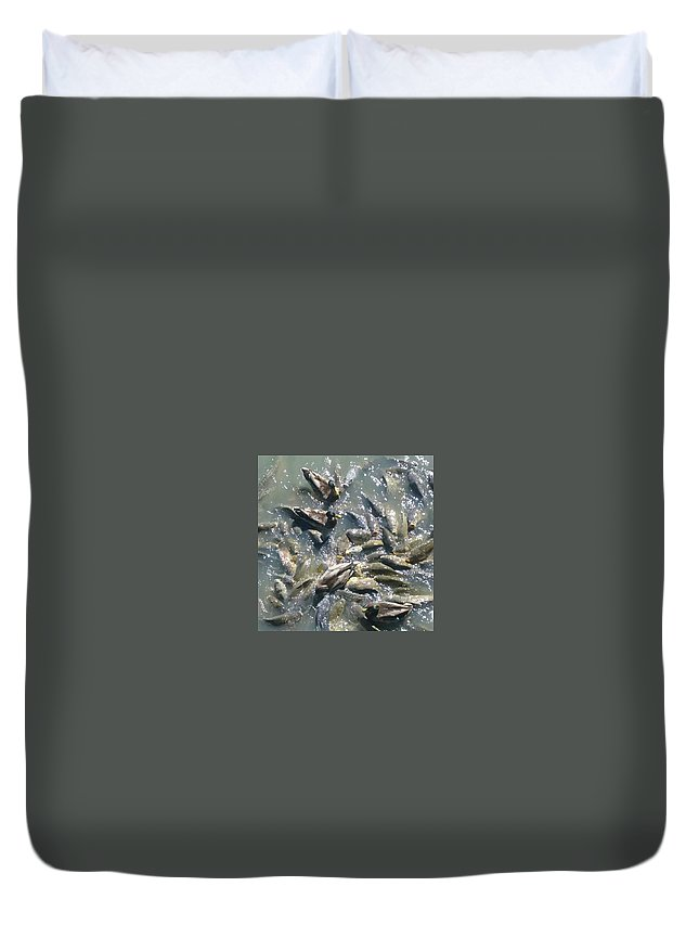 Fish Duvet Cover featuring the photograph Carp And Ducks by Darla Hershey