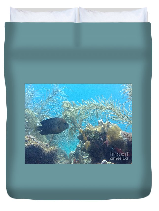 Ocean Duvet Cover featuring the photograph Carribean Sea Life by Gina Sullivan