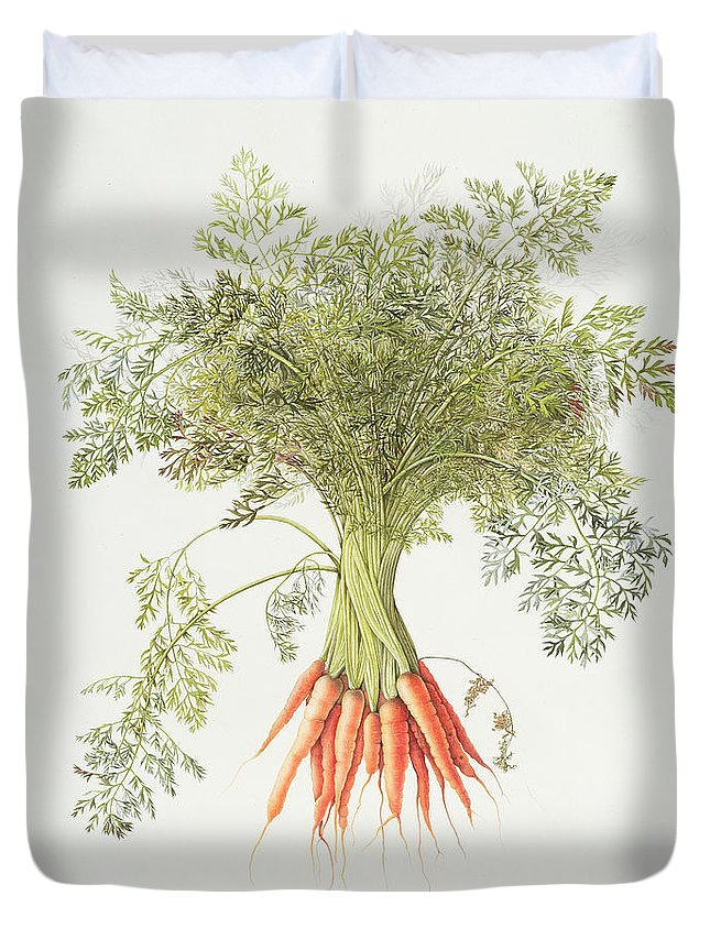Carrot Duvet Covers