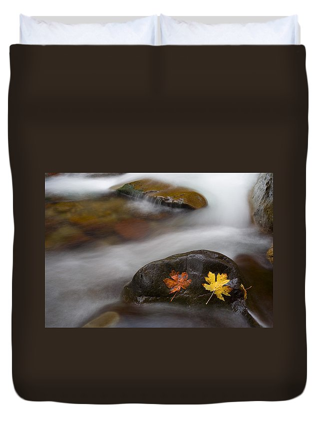 Leaves Duvet Cover featuring the photograph Castaways by Mike Dawson