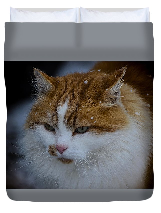 Cat Duvet Cover featuring the photograph Cat And Snowflakes by Omer Vautour