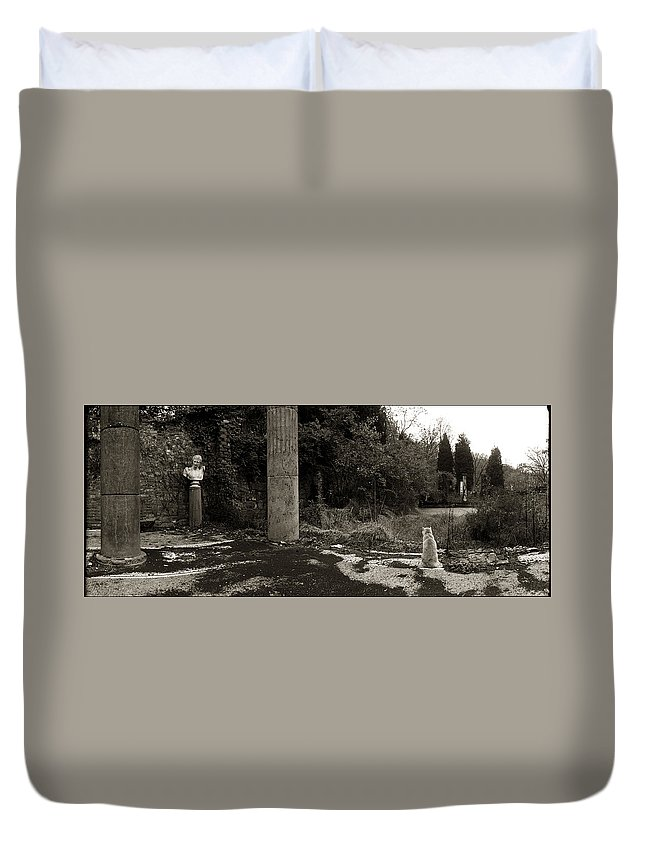 Cat Duvet Cover featuring the photograph Cat Contemplating The Bust Of Apollo, Eleutherian Mills by Allan Janus