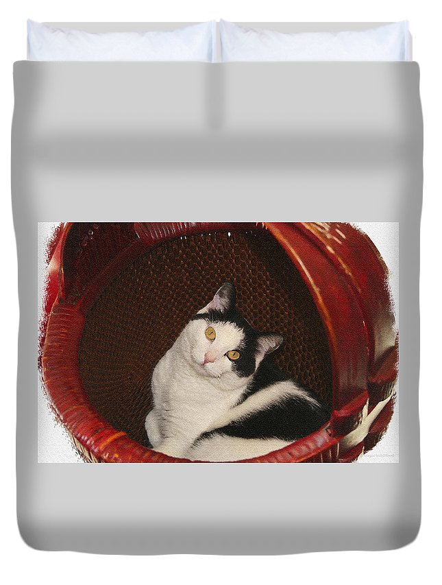Cat Duvet Cover featuring the photograph Cat In A Basket by Margie Wildblood
