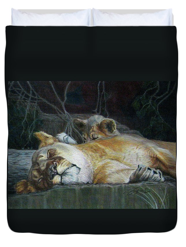 Fuqua - Artwork Duvet Cover featuring the drawing Cat Nap by Beverly Fuqua