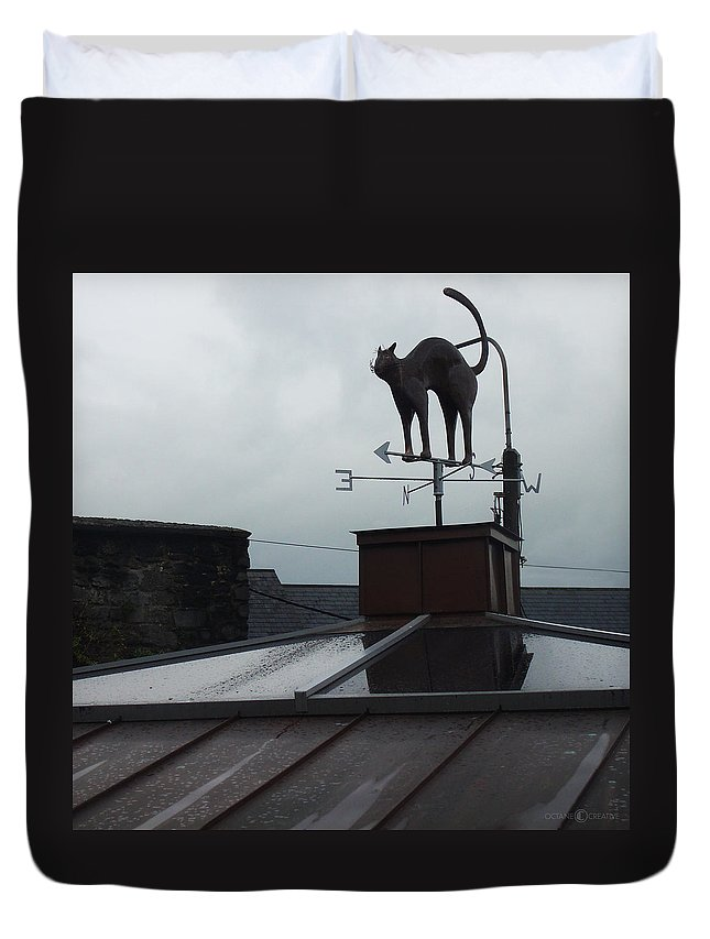 Cat Duvet Cover featuring the photograph Cat On A Cool Tin Roof by Tim Nyberg