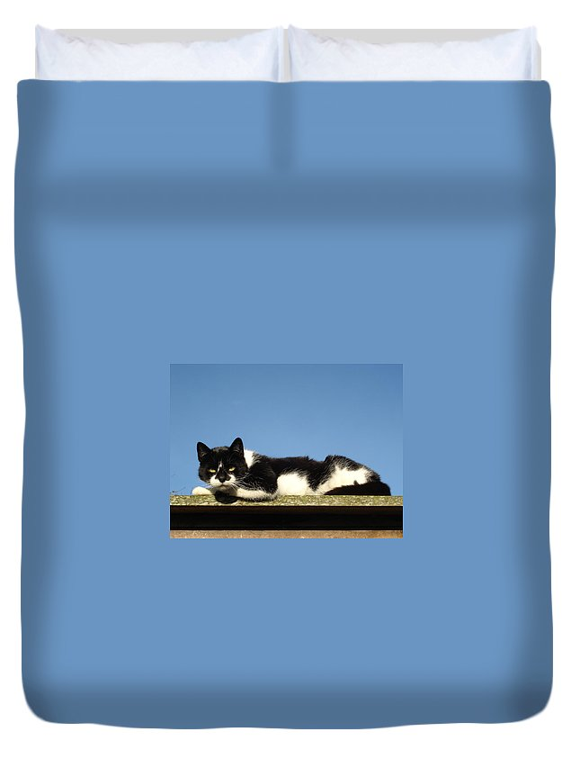 Cat Duvet Cover featuring the photograph Cat On The Roof by Susan Baker
