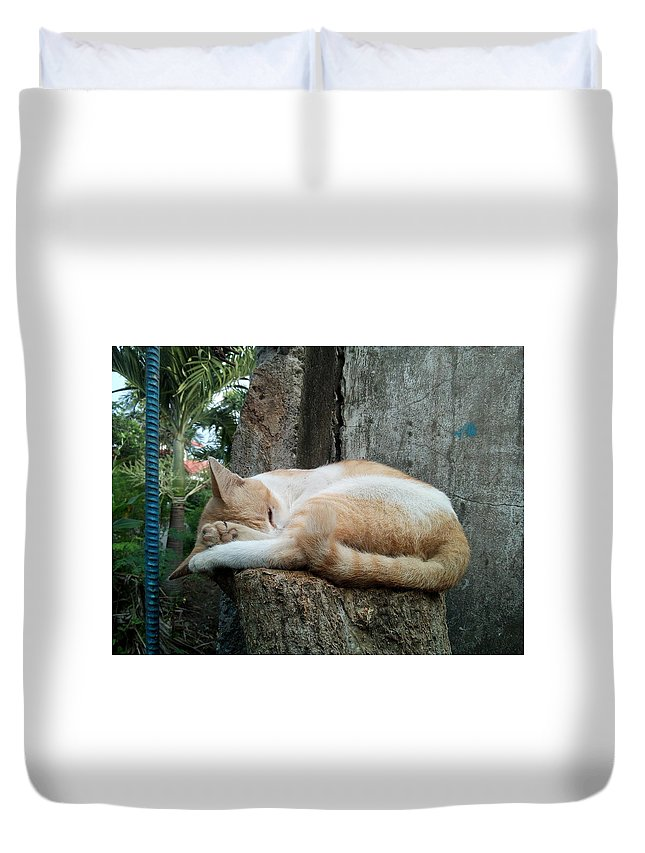 Cat Duvet Cover featuring the digital art Cat On The Tree by AG Suelto