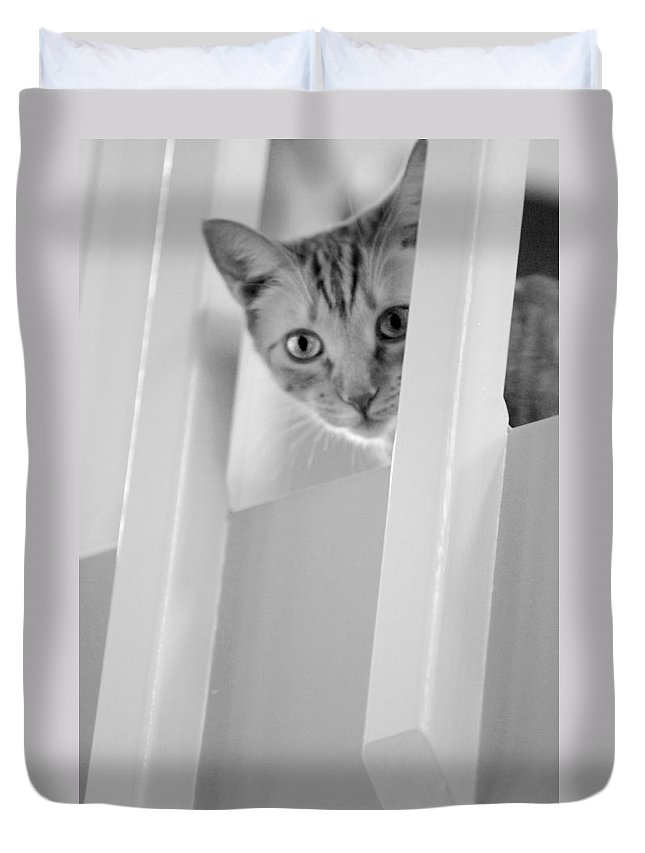Black And White Duvet Cover featuring the photograph Cat Spy Black And White by Jill Reger