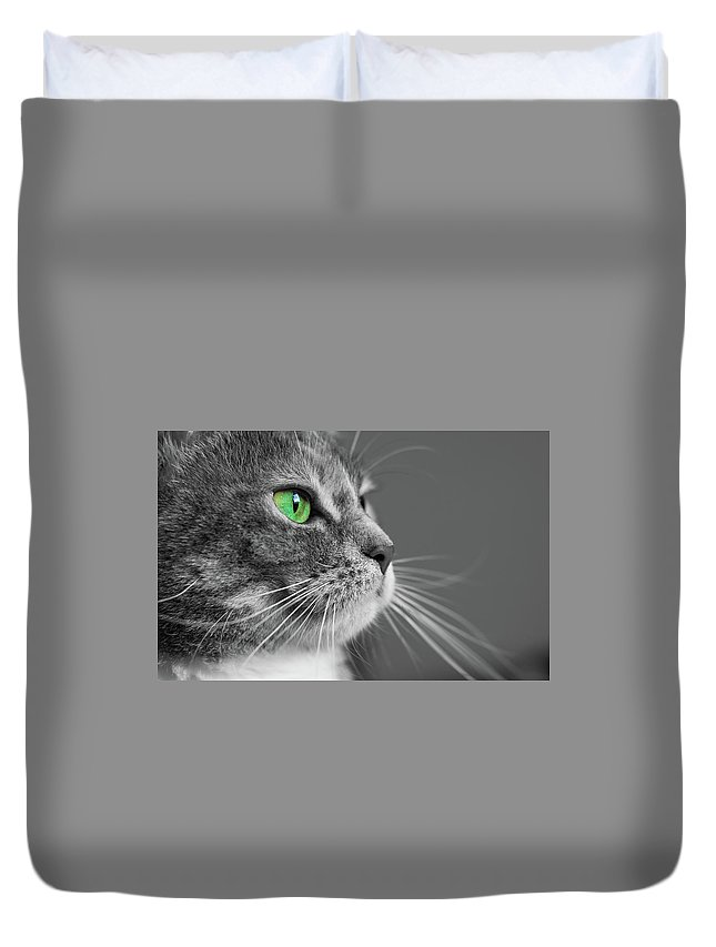 Cat Duvet Cover featuring the photograph Cat With Green Eyes by Victor Vega