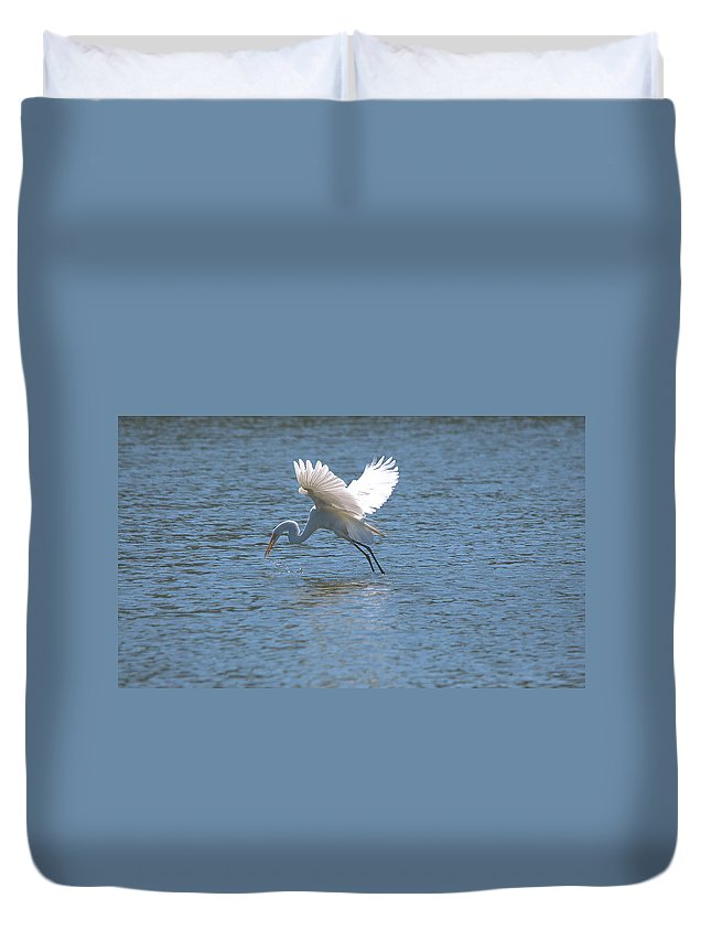 Roy Williams Duvet Cover featuring the photograph Catch Of The Day Series - 3 by Roy Williams