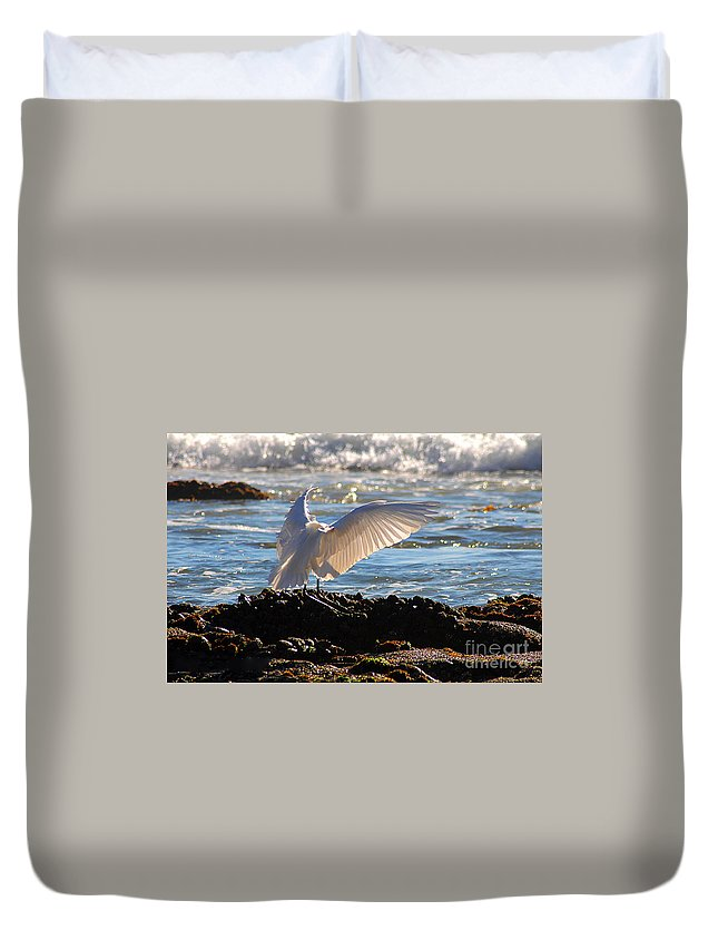 Clay Duvet Cover featuring the photograph Catching Rays At The Beach by Clayton Bruster