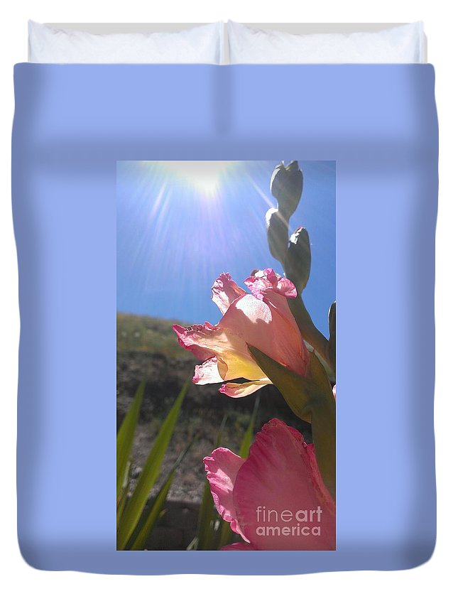 Gladiolus Duvet Cover featuring the photograph Catching Rays by LKB Art and Photography