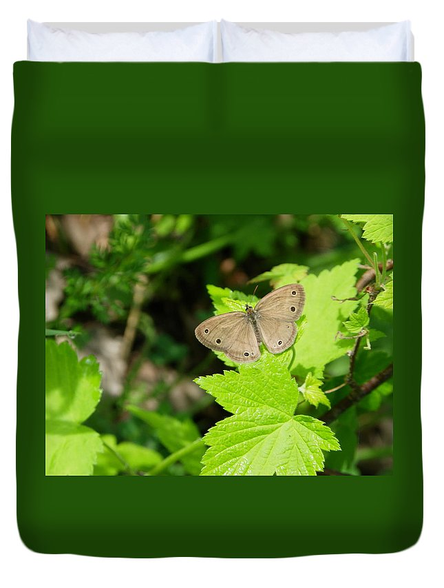 Nature Duvet Cover featuring the photograph Catching Some Rays by Peggy King