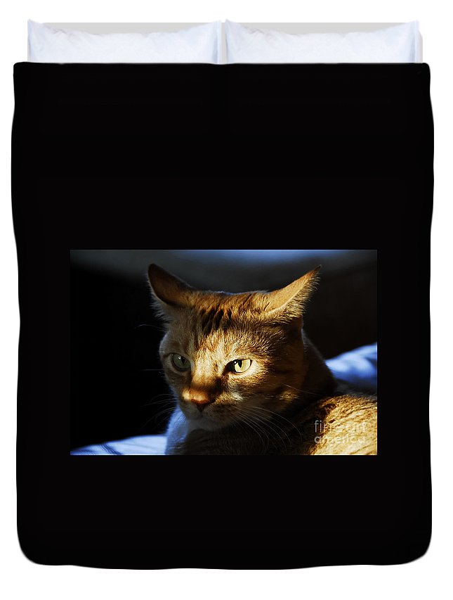 Cat.feline Duvet Cover featuring the photograph Catfish by David Lee Thompson