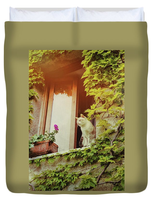Cat Duvet Cover featuring the photograph Cats Eye View by JAMART Photography