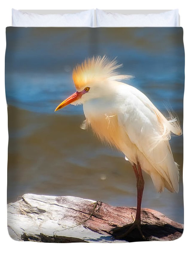 Animal Duvet Cover featuring the photograph Cattle Egret In Breeding Plumage by Rich Leighton