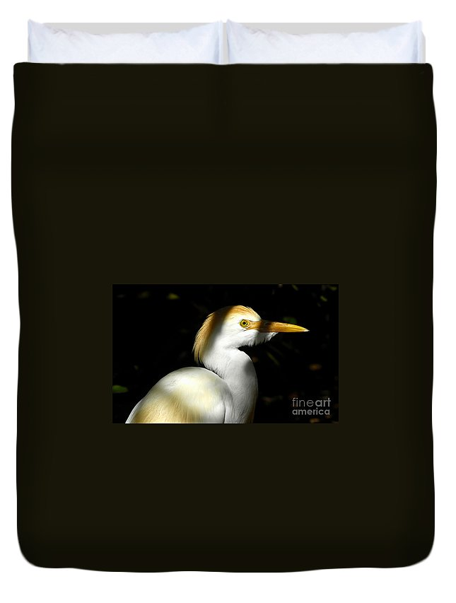 Cattle Egret Duvet Cover featuring the photograph Cattle Egret In Shadow by David Lee Thompson