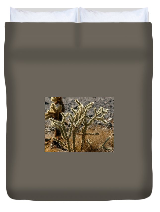 Desert Duvet Cover featuring the photograph Catus by Bill Mollet