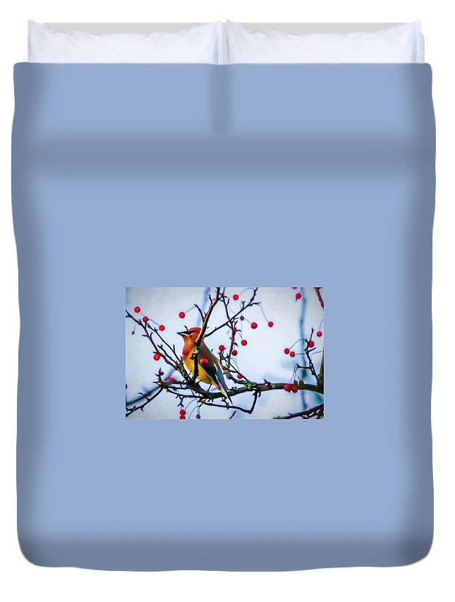 Cedar Waxwing Duvet Cover featuring the photograph Cedar Waxwing Painting by Trent Garverick