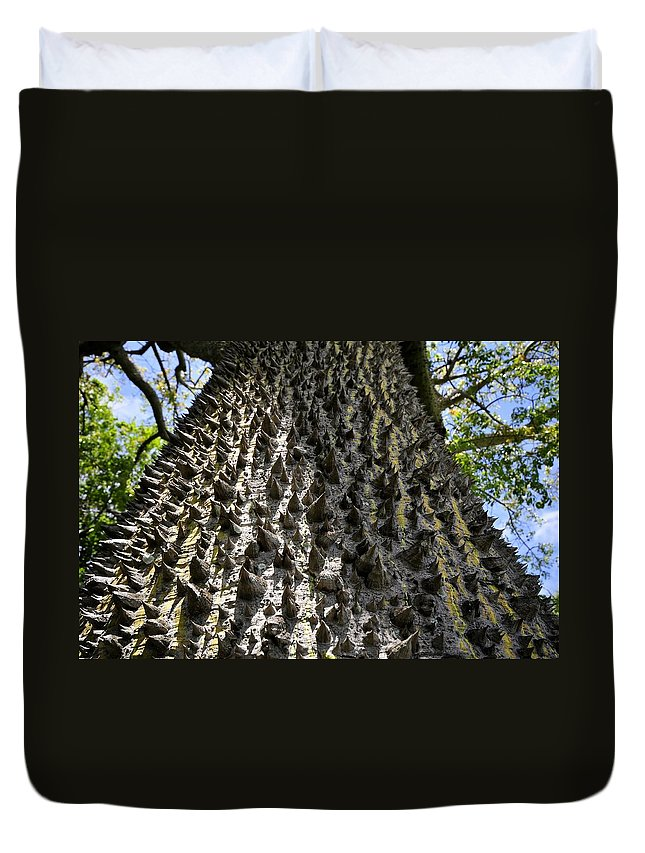Ceiba Tree Duvet Cover featuring the photograph Ceiba Tree by David Lee Thompson