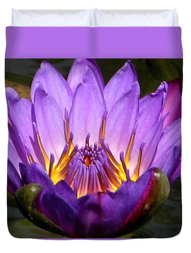 Water Lily Duvet Cover featuring the photograph Center Of The Universe by John Lautermilch