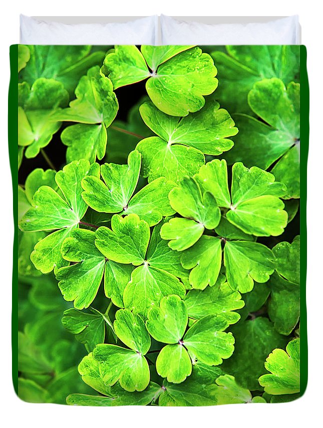 Green Leaves Duvet Cover featuring the photograph Certain Green by Christina Rollo