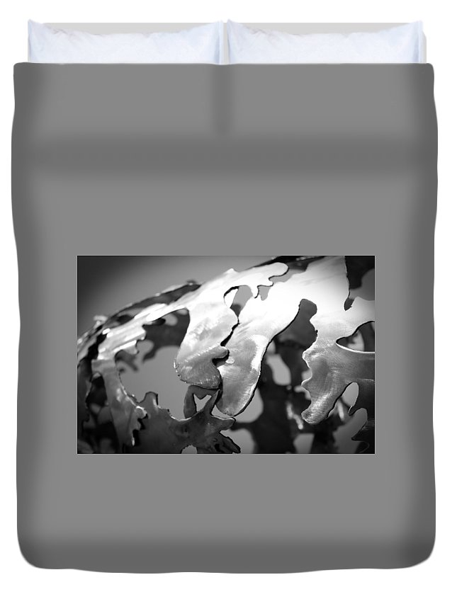 Metal Duvet Cover featuring the photograph Changes Horizontal by Shauna Lynch
