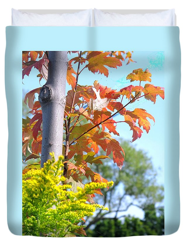 Maple Duvet Cover featuring the photograph Changing Leaves by Ian MacDonald