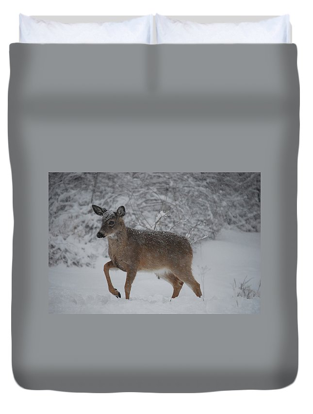 Deer Duvet Cover featuring the photograph Charge by Lori Tambakis