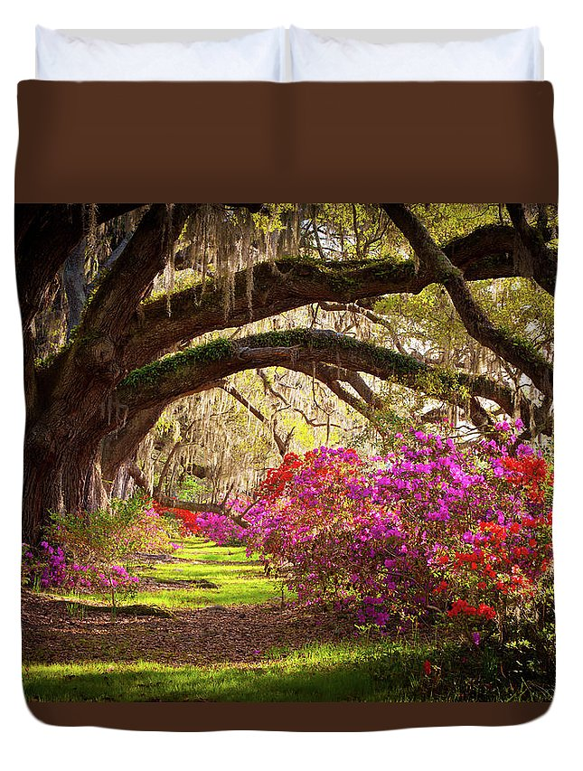 South Duvet Cover featuring the photograph Charleston Sc Magnolia Plantation Gardens - Memory Lane by Dave Allen