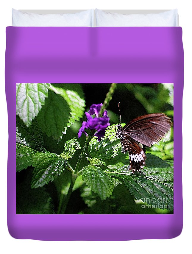 Tan Duvet Cover featuring the photograph Charming by Kathleen Struckle