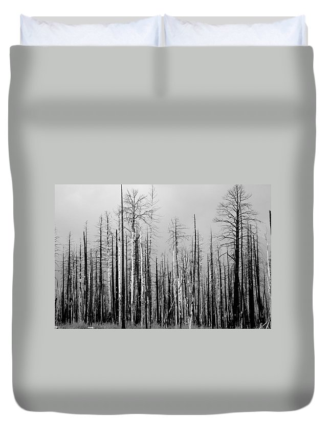 Charred Duvet Cover featuring the photograph Charred Trees by James BO Insogna