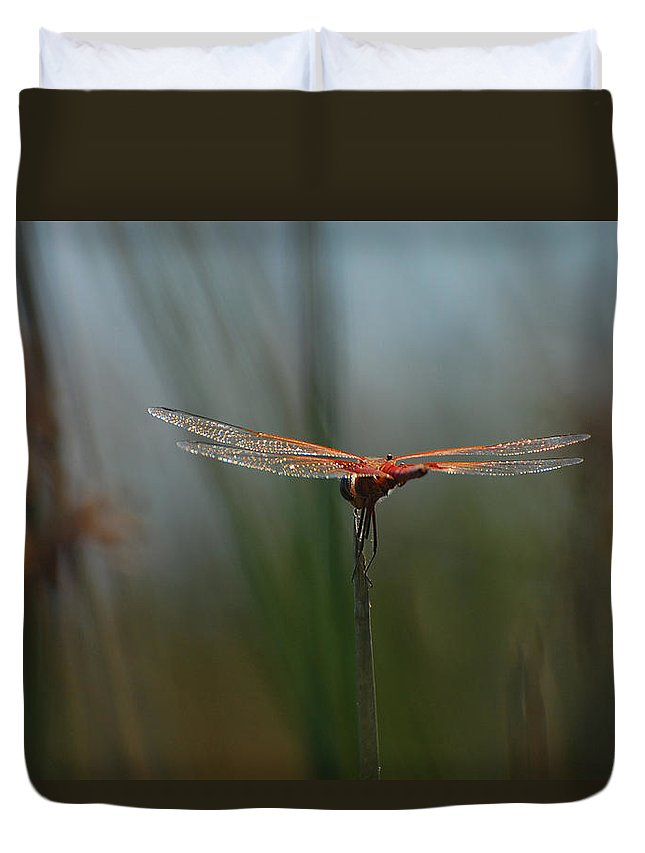 Dragonfly Duvet Cover featuring the photograph Chasing Beauty by Jean Booth